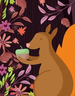 Squirrel acorn hello autumn illustration