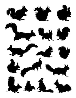 Squirrel animal silhouette