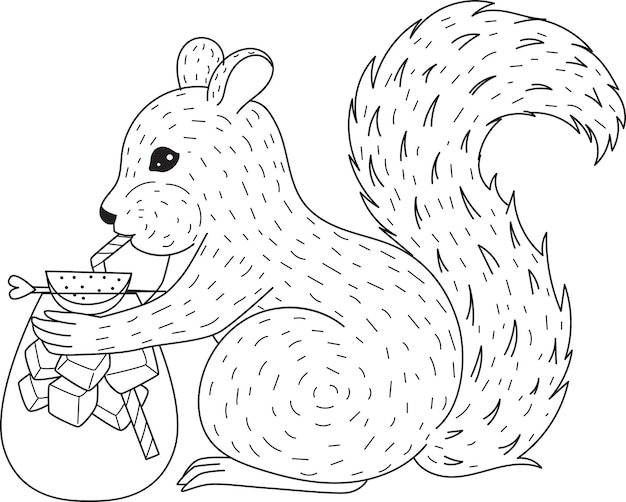 Squirrel drinking cocktail for coloring book, coloring page.  illustration