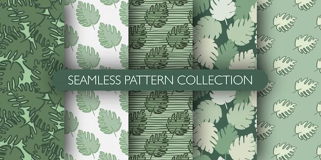 St из джунглей экзотических монстера листья бесшовные модели. коллекция тропических листьев.