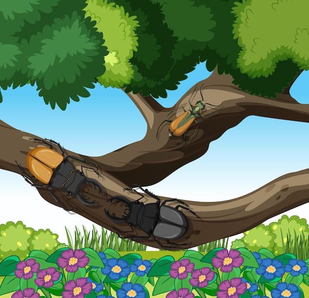 庭のシーンの枝にクワガタムシ
