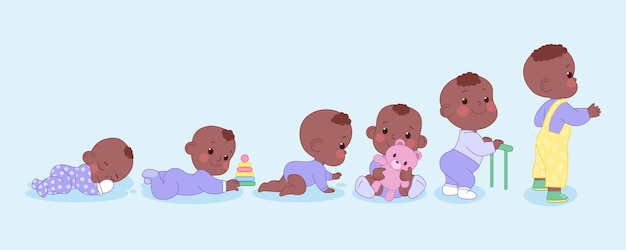 Stages of a baby boy illustration