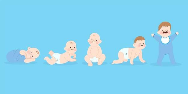 아기 소년 컬렉션의 단계