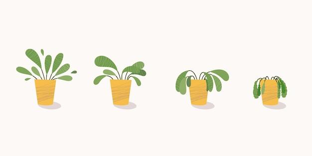 Этапы увядания, увядшее растение в горшке, заброшенное комнатное растение без полива и ухода Premium векторы