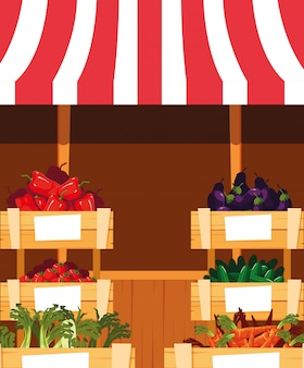 Stall kiosk of store fresh vegetables