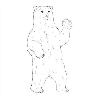 흰색 배경에 손으로 그리는 또는 스케치 스타일로 서 있는 북극곰
