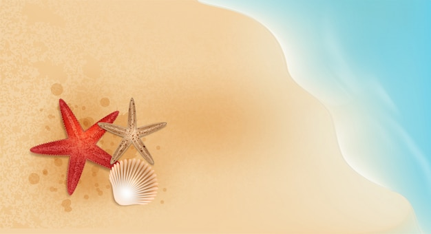 Starfish and shellfish elements summer sale promotion  shopping,summer promo,holidays on the beach,web banner template background vector 3d style