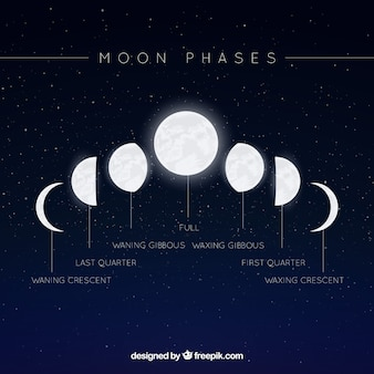Starry background with moon phases