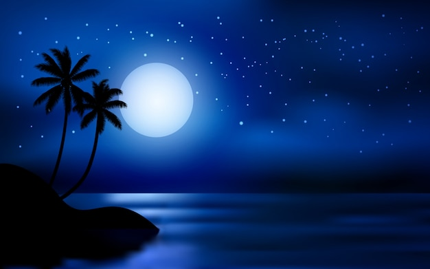 Starry night sky at sea with moon and palm trees