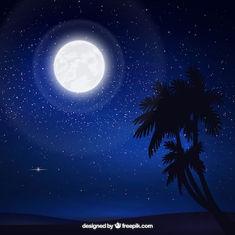 Starry sky background with moon and palm trees