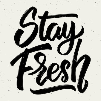 Stay fresh. hand drawn lettering  on white background.  element for poster, greeting card.  illustration
