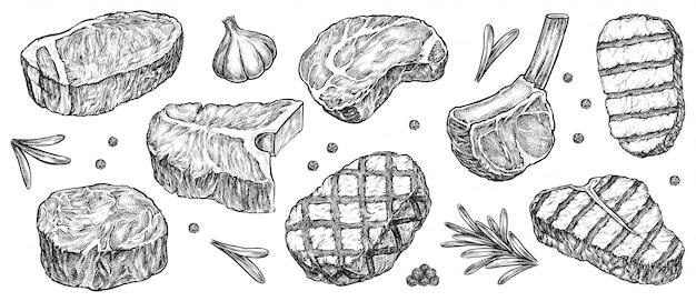 스테이크 스케치. 손으로 그린 쇠고기, 양고기 및 돼지 고기 스테이크 엑스트라 또는 미디엄 레어와 마늘, 녹지, 후추 향신료