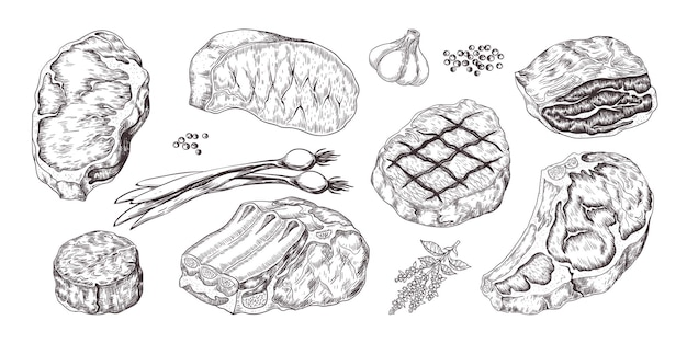 Steak. vintage sketch with beef and pork chops ribs and fillet, butchery food products with garlic and pepper. hand drawn fillet meat set with onion, garlic, pepper
