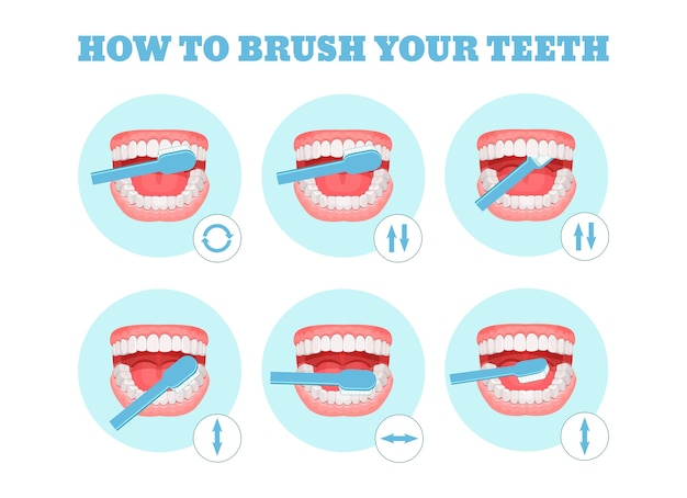 Step-by-step scheme, instructions on how to brush your teeth properly.