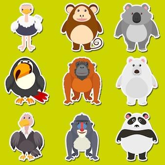귀여운 동물을위한 스티커 디자인
