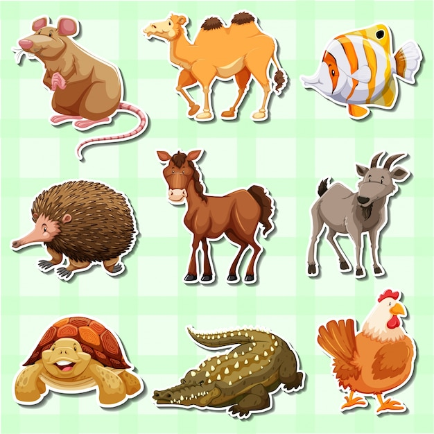 Sticker design for many animals