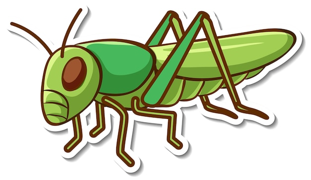 Sticker design with a green grasshopper isolated