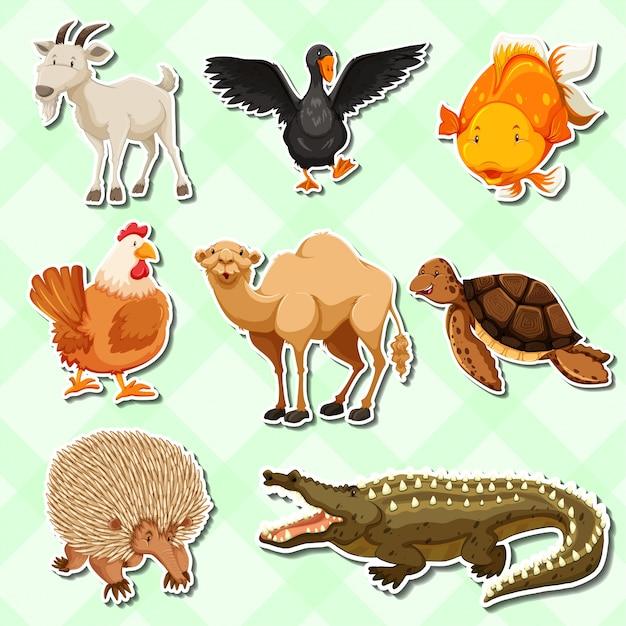 Дизайн наклейки с множеством животных
