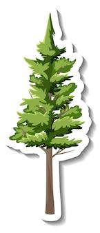 흰색 바탕에 스티커 상록 나무