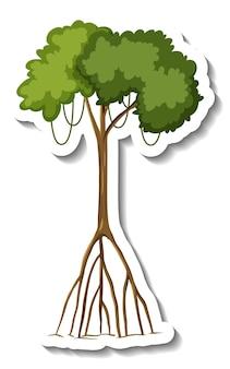 白い背景の上のステッカーマングローブの木