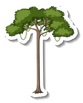 白い背景の上のステッカー熱帯雨林の木