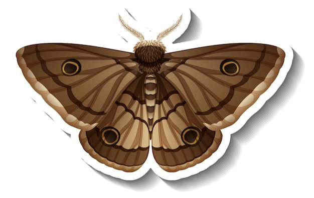 A sticker template with butterfly or moth isolated
