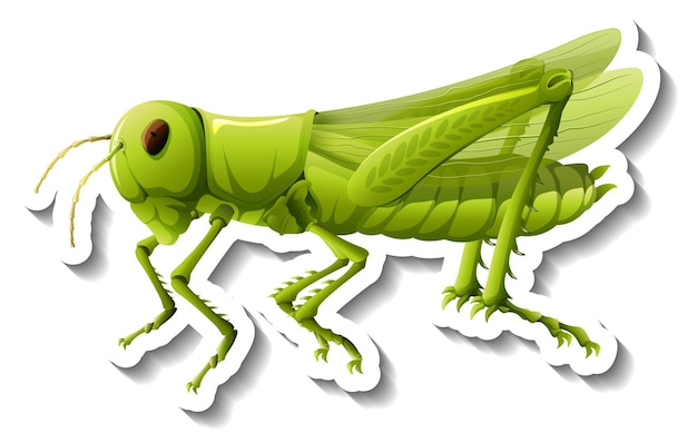 A sticker template with a grasshopper isolated