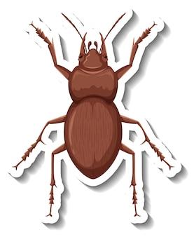 Un modello di adesivo con vista dall'alto di uno scarabeo isolato