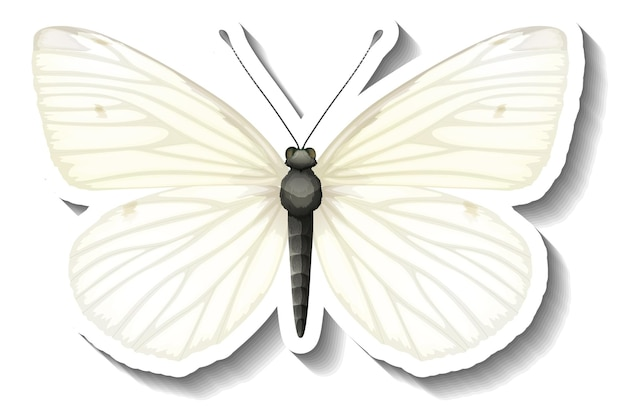 A sticker template with white butterfly isolated