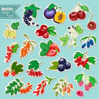 果実とstikersのベクトルコレクション
