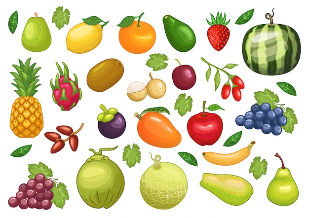 Stock vector set of fruits graphic object illustration