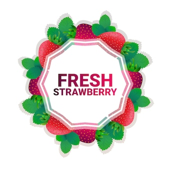 Strawberry fruit colorful circle copy space organic over white pattern background