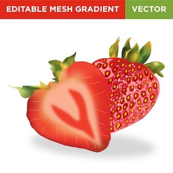イチゴ果実のイラスト
