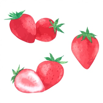 Strawberry hand paint in watercolour collection