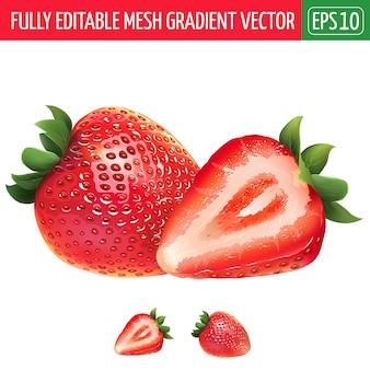 Strawberry illustration on white