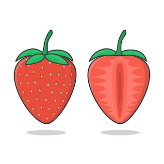 Strawberry and slices of strawberry illustration.