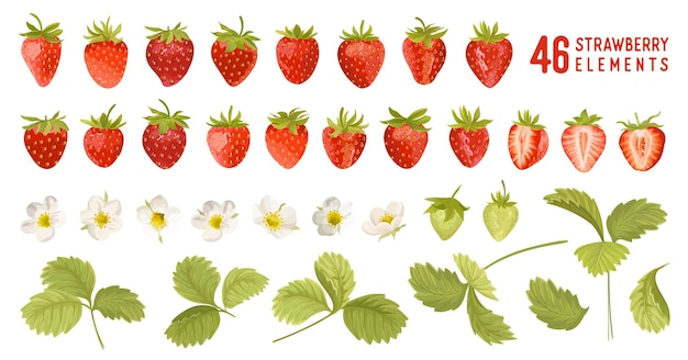 Strawberry vector illustration set. watercolor cute berry, flowers, leaves isolated. summer garden design elements for invitation, greetings, textile, backdrop, wallpaper