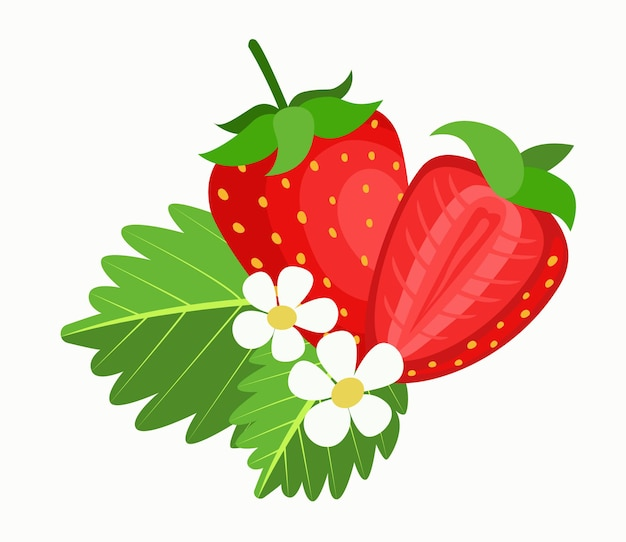 Strawberry with leaves  flat style strawberry icon isolated on white background