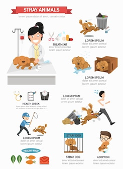 Stray animal infographic illustration.