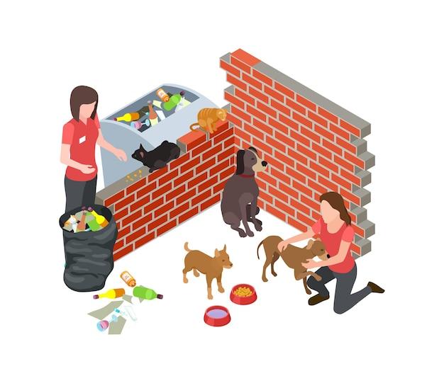 길잃은 동물 문제. 길 잃은 개 고양이는 돌보아줍니다. 등각 투영 벡터 자원 봉사자와 노숙자 동물. 노숙자 동물 자원 봉사, 지원 및 자원 봉사 일러스트레이션
