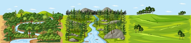 Stream in forest nature landscape scene