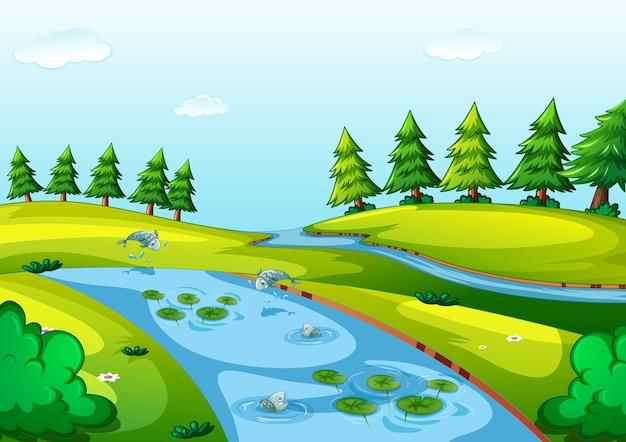 Ручей в природном парке