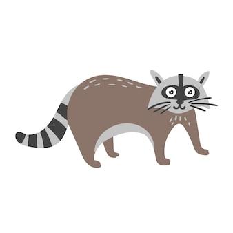 Striped raccoon
