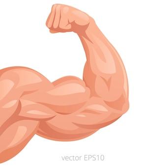 Сильная рука с большими тугими бицепсами как символ мужественности, здоровья и силы