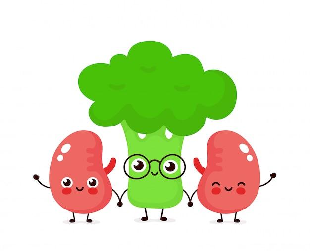 強いかわいい健康的な幸せな腎臓とブロッコリーのキャラクター。