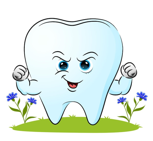The strong tooth with the big muscle is giving the happy expression of illustration