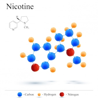 Structural chemical formula and molecule model nicotine