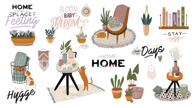 Stylish scandic living room interior - sofa, armchair, coffee table, plants in pots, lamp, home decorations.