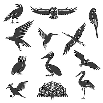 Stylized birds silhouettes black set
