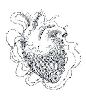 Стилизованная иллюстрация сердца, запутанного в нитях. вектор